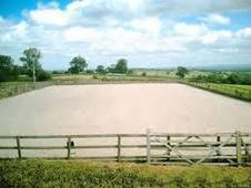 Wanted Horse Arena Menage Second Hand Used New Rubber Sand Fiber