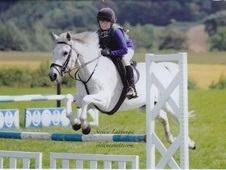14. 2 hh Genuine Allrounder/Hunter