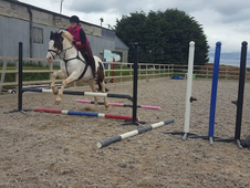 Shared loan wanted.. 15. 3 hh +