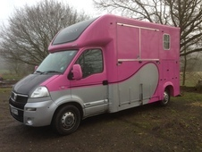 **REDUCED** PINK VAUXHALL MOVANO CDTI 2. 4L 3. 5 TONNE HORSEBOX 5...