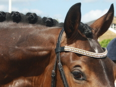 Competition Plaiting Service