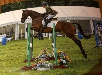 Quality Mare by Breitling LS - Winning grand prix show jumper