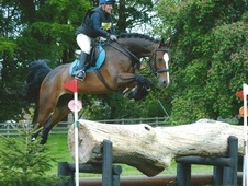 C why badminton grassroots finalist 2017 very talented eventer wi...