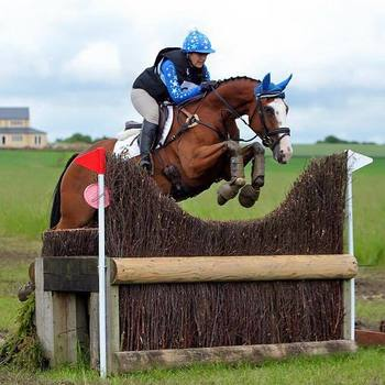 Superb Amateur Riders Grassroots Horse