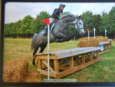 Lovely Talented Eventer with great BE record