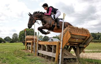 Heartbreaking sale of quality allrounder/grassroots Eventer/ dressage horse