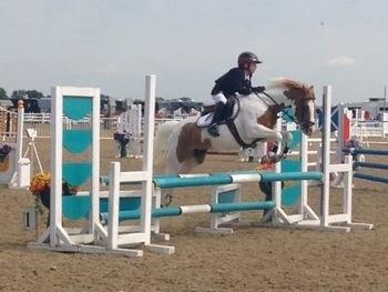 Super 12.2 ideal stepping stones pony