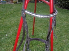 Full Size Bridle