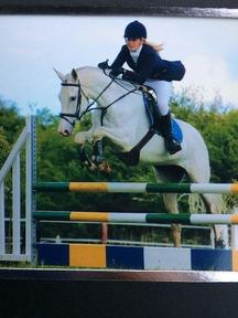 Superb Riding Club/Pony Club All-Rounder