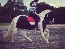 14. 2hh Cob for full loan OR share