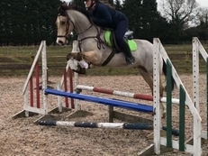 Super Eventing Pony
