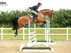 *** Super scopey 5 yr old ***