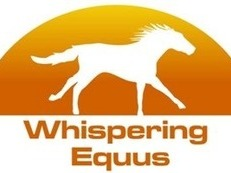 Whispering Equus- Certified Monty Roberts Instructor