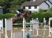 TOP CLASS! Superb 9yr old Professional/Young rider showjumper