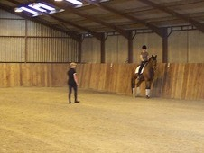 Dressage training and livery - West Sussex