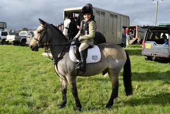 Top hunting pony