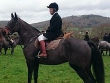 School mistress for dressage and eventing