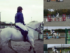 Allrounder 14. 2, 5yr Gelding- PC/BS Potential
