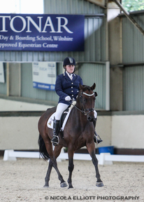 14.2hh Mothers Dream Dressage Pony