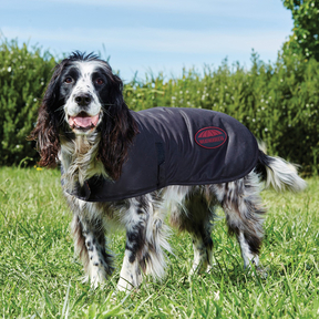 Weatherbeeta - Waxed Dog Coat