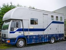1996 MAN Horse Lorry For Sale