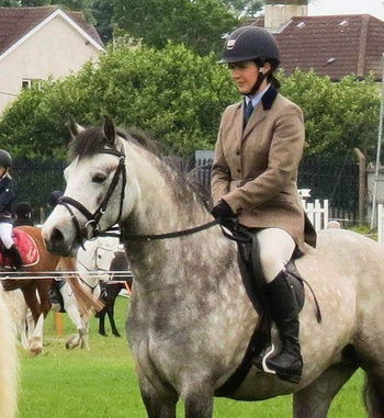 TOP CLASS 138 CONNEMARA M&M / COMPETITION / PERFORMANCE PONY