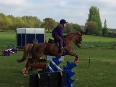 12hh Pretty Chestnut Mare Second Pony (or first for confident rider)