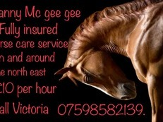 Nanny Mc Gee Gee horse care services.