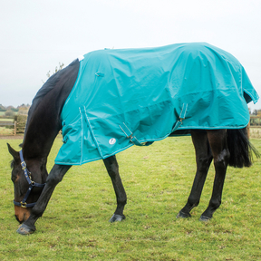 Jumpers Horse Line - Essential Lightweight Turnout