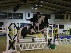 Fantastic All Rounder For Sale