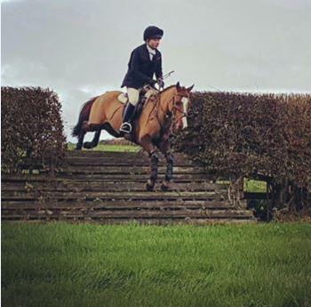 Fun All-Rounder/ Hunting Pony