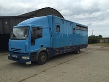 Iveco HGV 6 stall horsebox