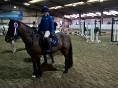 Fabulous Confidence Giving Pony Club Pony (Bath)