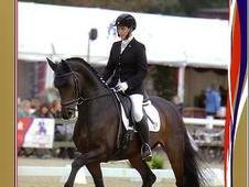 Part/ Full time person needed for Sharon Edwards Dressage Trainin...