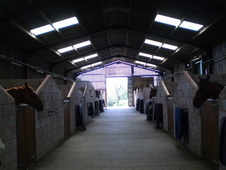 Full & Part Livery at Skilts Farm Stables