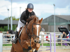 GENUINE YOUNGSTER - SUPER POTENTIAL HUNTER/ALLROUNDER