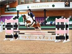 Stunning 14.2hh 10 year old Skewbald gelding for sale