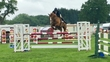 Doney - young riders/1.40 horse  for sale in United Kingdom