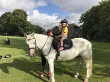 Fantastic Lead Rein/2nd pony for sale