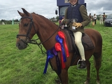 WORKING HUNTER / PC / ALL ROUNDER COMPETITION 2ND PONY