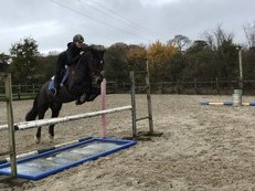 Super Cob Fantastic Jumper /All Rounder