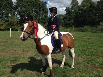 13.2hh 8 year old skewbald gelding. Fun Allrounder / Jumping Pony.