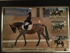 Dressage / show pony / mother daughter share