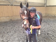 Maggie May 13. 2hh Welsh D Mare