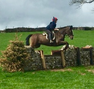 Super PC/Jumping Schoolmaster Cob
