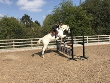Super Showjumping schoolmistress