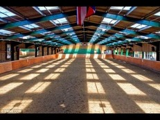 Five Star facilities for you and your equestrian best friend