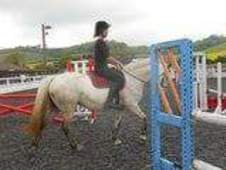 14. 2hh connie fun alrounder