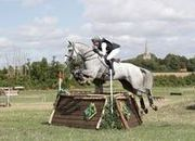 17hh 10yr Old Eventer, Hunter-Jumper, Showjumper, Top of the Range All-Rounder
