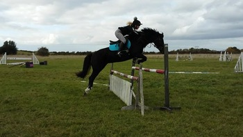 14.1hh pc eventer
